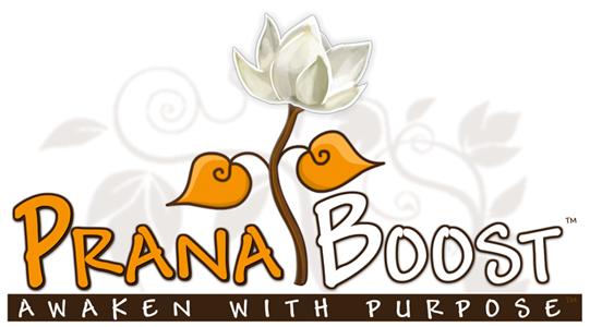 PranaBoost.com